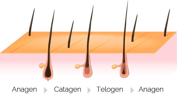 Best Laser Hair Removal in Portland Oregon